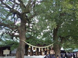 縁結び 東京 神社 パワースポット 1
