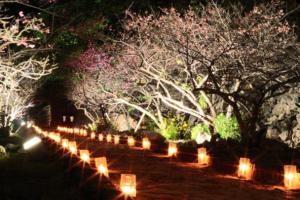 1月 沖縄 服装 気温 旅行 イベント 3