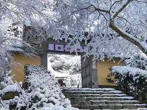 冬 京都 おすすめ デート スポット ランキング