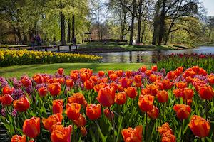 春 海外旅行 人気 ランキング おすすめ 3