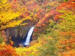 秋の旅行でおすすめな国内のスポット!カップルや家族からの人気は?