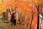秋にするデートでカップルから人気のあるスポットをランキングでご紹介!