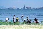 潮干狩りができる福岡県近辺のおすすめスポット!人気や穴場スポットは?