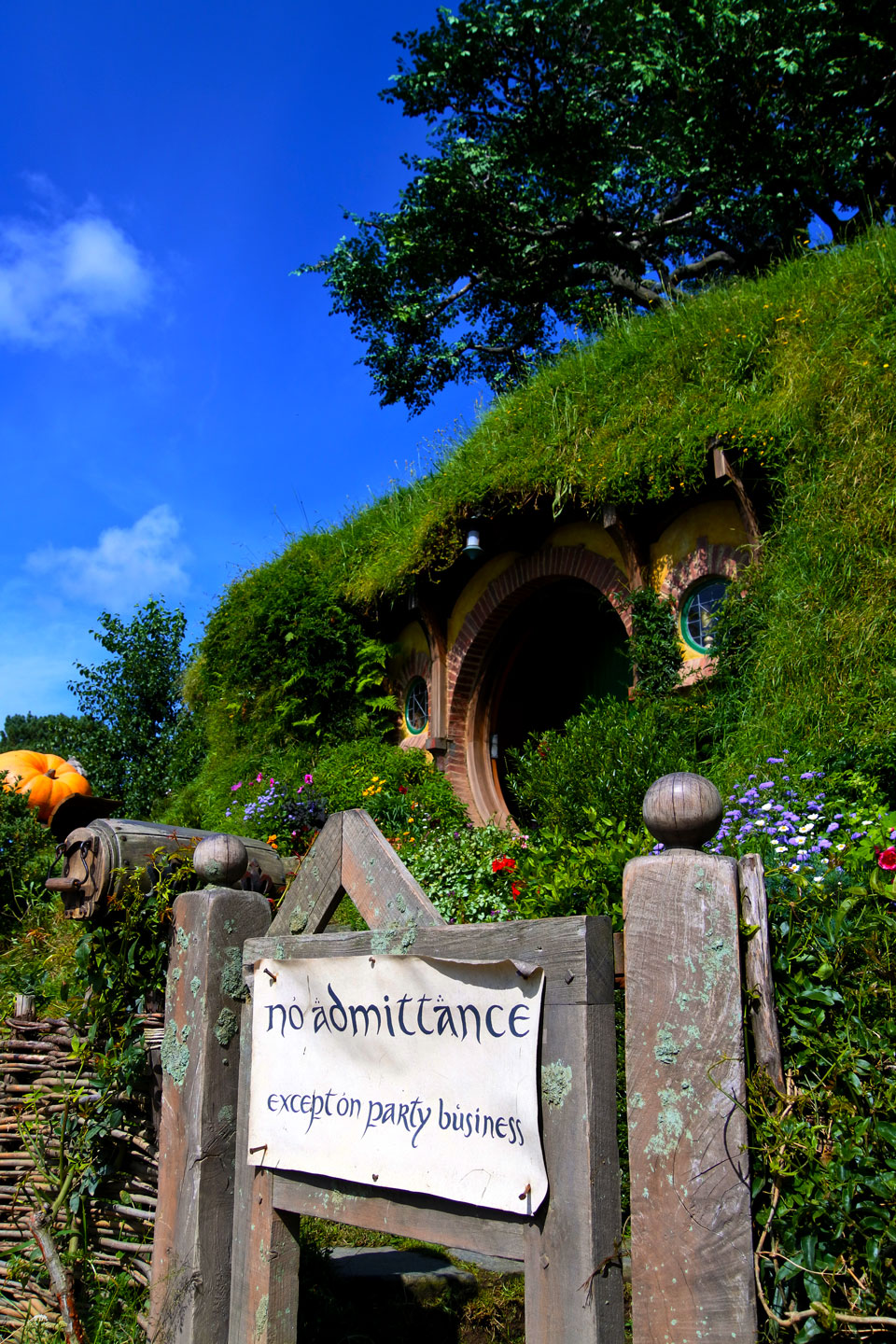 Hobbiton-matkablogi-ikilomalla-finnish-travel-blog-4