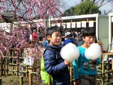 setagaya-plum-festival-hanegi-park-8