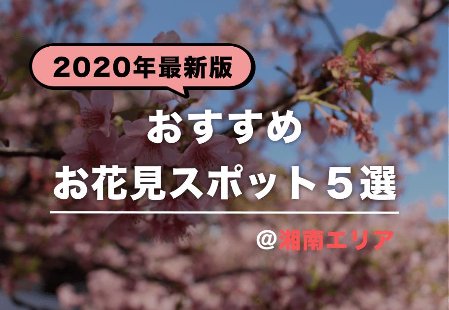 【2020年最新版】湘南エリアでおすすめお花見スポット5選