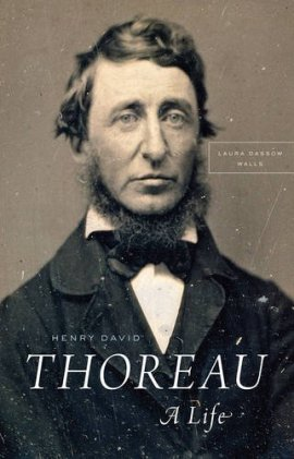 Henry David Thoreau: A Life ebook epub/pdf/prc/mobi/azw3