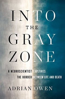 Into the Gray Zone ebook epub/pdf/prc/mobi/azw3 by Milo Yiannopoulos