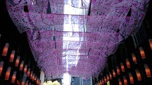日本橋~福徳の森