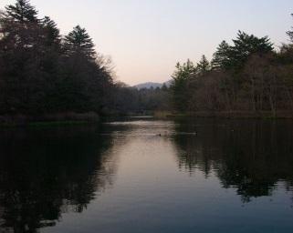 軽井沢~雲場池バリアフリー情報