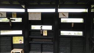 車椅子でお出かけバリアフリー公園情報~東京港野鳥公園