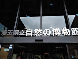 車椅子で行く長瀞 埼玉県立自然の博物館 バリアフリー情報
