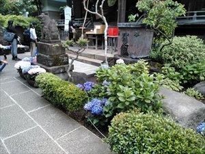 白山神社と白山公園、そして白山浅間神社