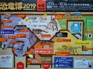 恐竜展2019」の展示会場は地階です