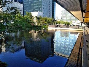 水と緑の庭園