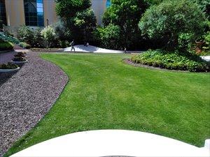 ガーデンサイトとオリーブと噴水の広場