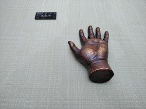 手足の展示