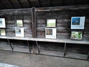 淡水池観察壁