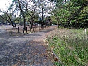 公園散策路のバリアフリー状況