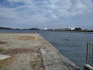 横浜市で唯一の自然海岸線が残る公園