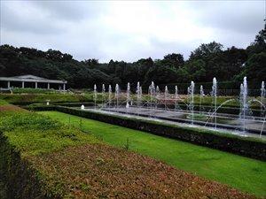 都立神代植物公園(調布市)