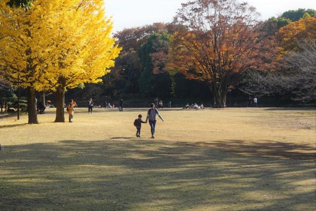 混雑を避けてお出かけ 駐車場がある東京都のバリアフリーな屋外施設