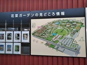 平塚「花菜ガーデン」を散策