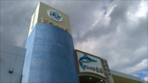 三崎生鮮ジャンボ市