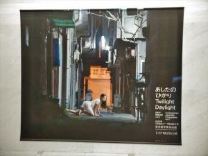 東京都写真美術館「あしたのひかり」展