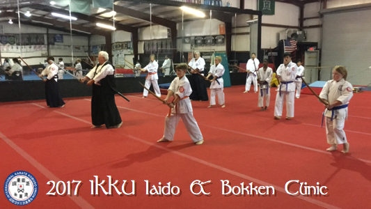 2017 IKKU Iaido and Bokken Clinic