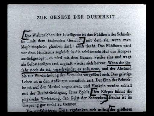 dialektik_der_aufklaerung-genese_der_dummheit