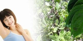 tips menghilangkan bau badan