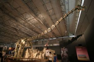 By Kabacchi (Titanosaur - 01 Uploaded by FunkMonk) [CC BY 2.0 (http://creativecommons.org/licenses/by/2.0)], via Wikimedia Commons