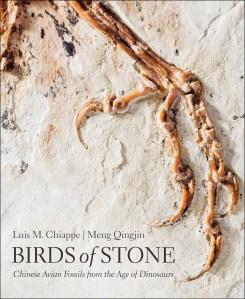 Birds of Stone