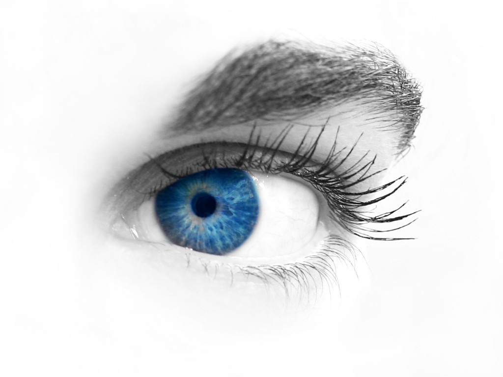 Eye Opening Symposium Will Help The Vision Impaired