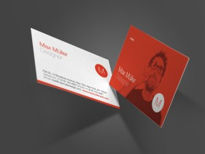 Neue Swiss Resume Business Cards