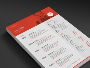 Neue Swiss Resume professional career work page template