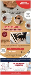 How Much Does It Cost To Get A Bed Bug Extermination