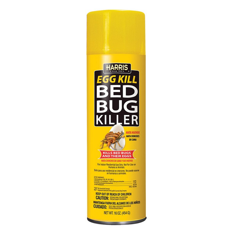 Washing Your Clothes With Bed Bugs