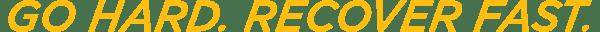 iKOR_logo_tagline_gold-01
