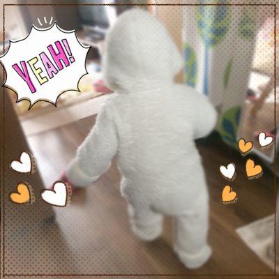 1歳1ヶ月の成長記録★持ちネタ・言葉も増えた走るウサギ♪
