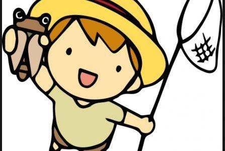 夏休み自由研究おすすめランキング小学校高学年編!4・5・6年生向け人気テーマは!
