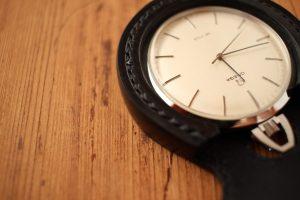 エイ革懐中時計ケース
