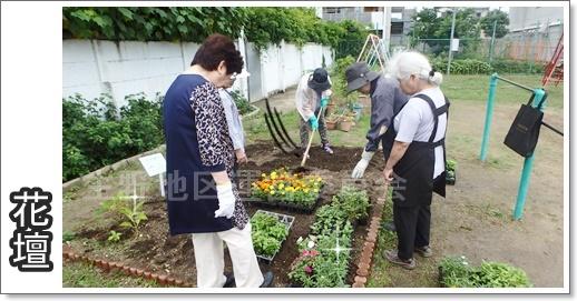 花壇植え替え8