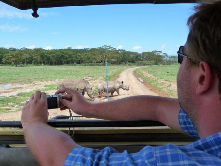 camera II op safari