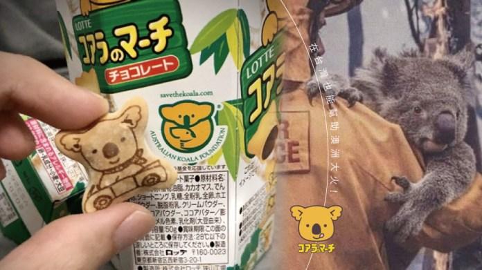 """Image result for 无尾熊为主要图案的""""乐天小熊饼"""""""