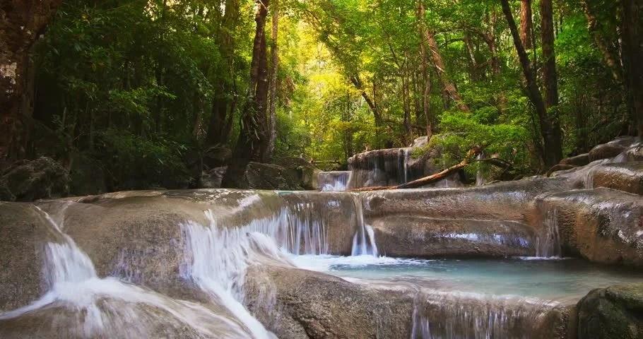 Waterfall In Rainforest Full HD1080 Stock Footage Video