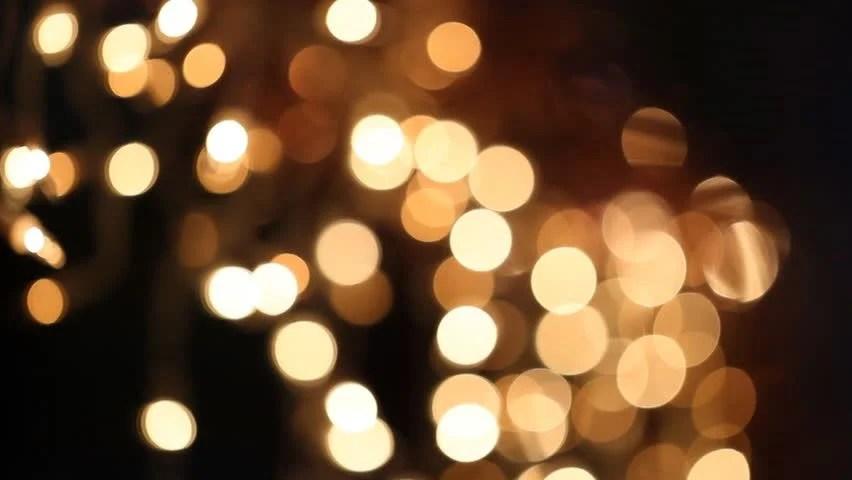 Outside Christmas Lights Net