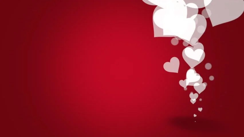 Red Valentines Video Background With Pastel Growing Red