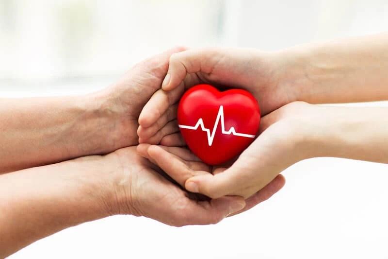 Organ Ve Doku Bağışı